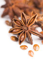 Whole star anise isolated on white background with shadow Royalty Free Stock Photo