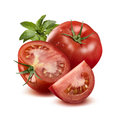 Whole tomato in water drops, half, quarter and basil isolated Royalty Free Stock Photo