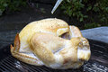 Whole turkey on the grill being basted while roasting a charcoal Royalty Free Stock Photos