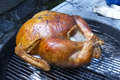 Whole turkey roasting on grill a charcoal Stock Photos