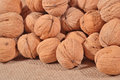 Whole walnuts in a sacking background Royalty Free Stock Images
