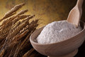 Whole wheat flour Royalty Free Stock Images