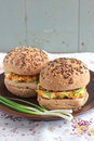 Wholegrain burgers with tofu and vegetables Royalty Free Stock Images