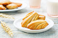 Wholegrain madeleine on a light woody background tinting selective focus Royalty Free Stock Photography