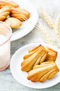 Wholegrain madeleine on a light woody background tinting selective focus Stock Image