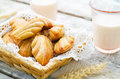 Wholegrain madeleine on a light woody background tinting selective focus Stock Photos