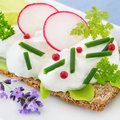 Wholemeal crispbread and curd with herbs healthy diet radish Stock Images