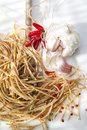 Wholemeal spaghetti garlic and chili oil dish of italian cuisine integral Stock Photography