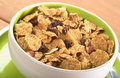 Wholewheat Cereal with Dried Fruits Stock Image