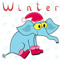 Why elephant is so cold in winter cheerful the cap of santa and the boots on the background of a Stock Photography
