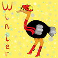 Why ostrich is so cold in winter cheerful a red hat scarf on neck and boots on the background of a motif hand Royalty Free Stock Photos