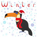 Why toucan is so cold in winter cheerful a cap of santa and a scarf on neck on the background of a motif hand Royalty Free Stock Images
