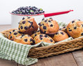 Wicker basket of berry muffins fresh Royalty Free Stock Images