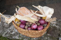 Wicker basket with corn nuts pumpkin and onion on a stone wall Royalty Free Stock Photography
