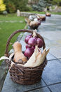 Wicker basket with corn nuts pumpkin and onion on a stone wall Stock Images