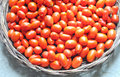 Wicker basket filled with fresh tomatoes and red Royalty Free Stock Photo