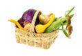 Wicker basket with freshly picked vegetables Royalty Free Stock Photo