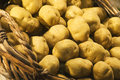 Wicker basket full of potatoes Royalty Free Stock Photo