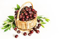 Wicker basket full of ripe red cherry on white background Stock Photos