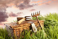 Wicker basket with garden tools in grass  Royalty Free Stock Photography