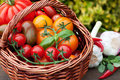Wicker basket with tomatoes a full of on a garden table Royalty Free Stock Photo