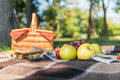 Wicker picnic basket and fresh tasty fruits on plaid in park Royalty Free Stock Photo