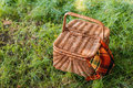 Wicker picnic basket with rug on green grass Royalty Free Stock Photo