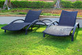 Wicker sun loungers on the grass in the Stock Photo