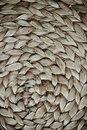 Wicker texture Stock Photography