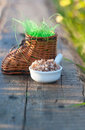 Wicker toy clog and boiled buckwheat rich artificial grass Royalty Free Stock Image
