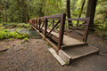 Wide angle photo of nature bridge end near marymere falls olympic national park horizontal over stream with trees and rocks Stock Photos