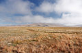 A wide mountain steppe meadow with yellow grass and mist clouds on the Ukok plateau