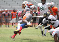 Wide receiver being tackled photo demonstrating a getting during a game between the south florida conference and gulf coast Stock Images