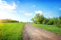 Wide road in the field st sunny day Royalty Free Stock Photo