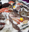 Wide selection of fish on market display seafood Stock Image
