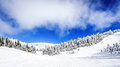 Wide Snowfields and Deep Snow Pack in the High Alpine Royalty Free Stock Photo
