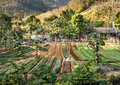 Wide view of an agricultural area near the mountains in the very heart of the northern laos Royalty Free Stock Photography