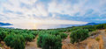Wide view of a Cretan landscape, island of Crete, Greece Royalty Free Stock Photo