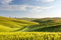 Wide views of Tuscany Royalty Free Stock Photo