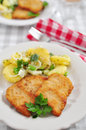Wiener schnitzel fried pork chop Stock Image