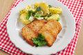 Wiener schnitzel fried pork chop Royalty Free Stock Photo