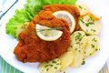 Wiener schnitzel with potato salad Royalty Free Stock Photo
