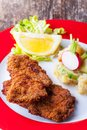 Wiener schnitzel and potato salad Royalty Free Stock Photo
