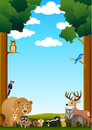 Wild animal cartoon Royalty Free Stock Photos