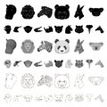 Wild animal cartoon icons in set collection for design. Mammal and bird vector symbol stock web illustration. Royalty Free Stock Photo