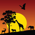 Wild animal in nature vector colorful Stock Photo