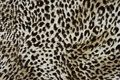 Wild animal pattern background or texture Royalty Free Stock Photo