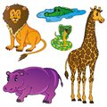 Wild animals collection vector illustration Royalty Free Stock Photo