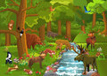 Wild animals in the forest cartoon illustration of coming to brook to drink some water Royalty Free Stock Image