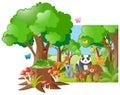 Wild animals in the forest
